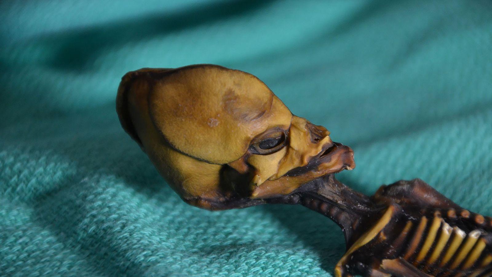Ata, a múmia de quinze centímetros encontrada no deserto de Atacama