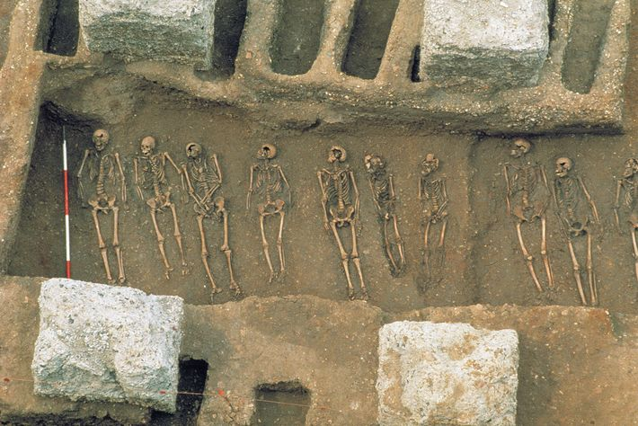 Vala Comum para Enterrar Vítimas da Peste