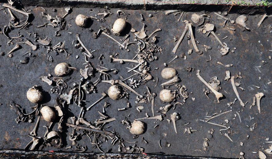 Os restos mortais das vítimas da batalha que ocorreu na Idade do Bronze em Tollense.