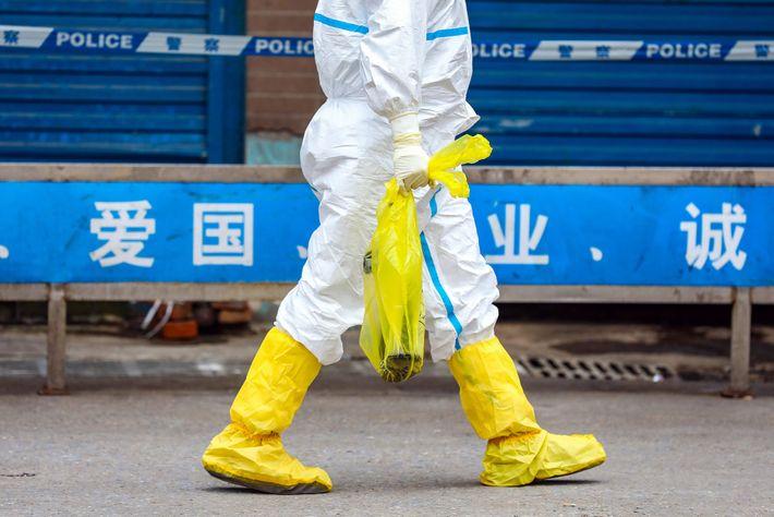 No mercado de vida selvagem de Wuhan, onde surgiu o surto de coronavírus em dezembro de ...