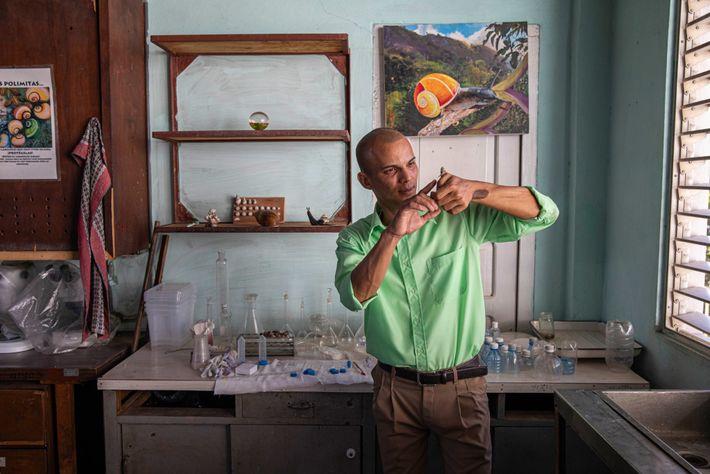 O biólogo Mario Gordillo segura um caracol pintado no laboratório de Reyes-Tur. Ainda não se sabe ...