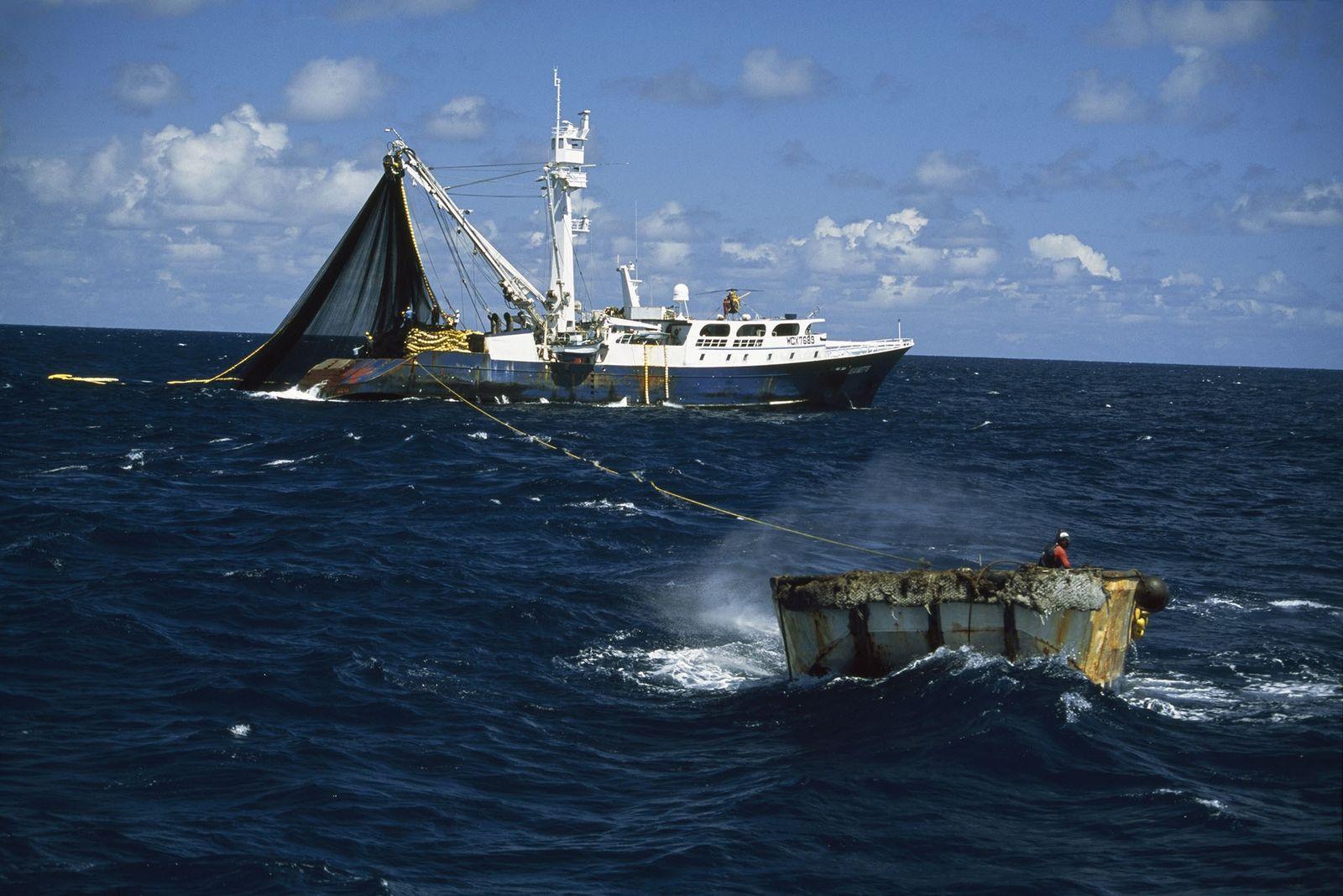 Um barco pesqueiro de atum.