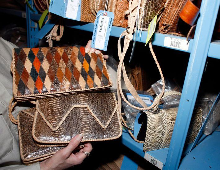 Uma bolsa de pele de cobra apreendida pelas autoridades está agora armazenada no Repositório Nacional de ...
