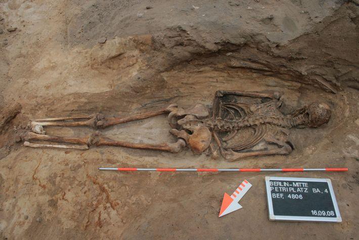 Um enterro medieval no cemitério de uma igreja de Berlim revela um homem deitado de barriga ...