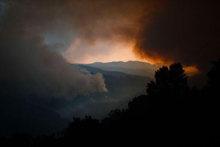 Colunas de fumo do incêndio florestal em Góis, no dia 20 de junho de 2017.
