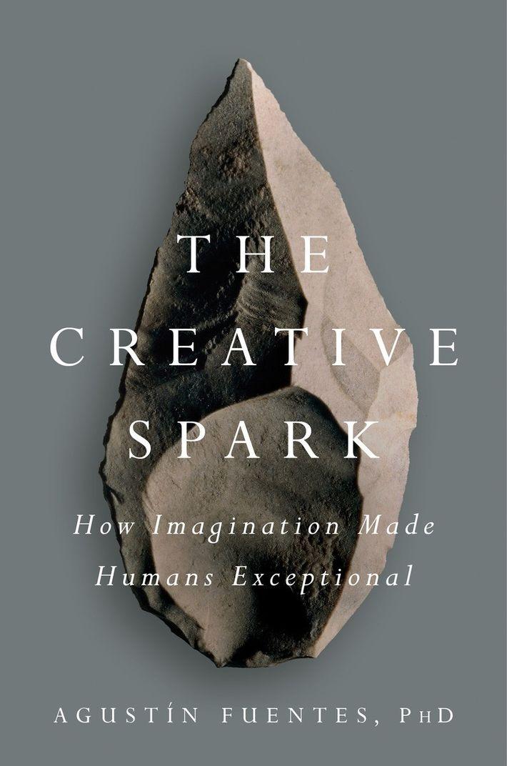 Criatividade e a Evolução Humana
