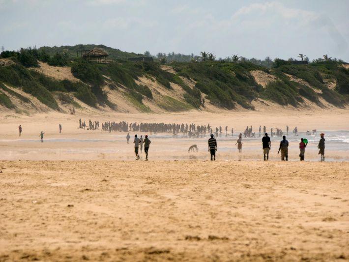 Multidões reúnem-se em torno de duas baleias que deram à costa, numa praia de Moçambique, em ...