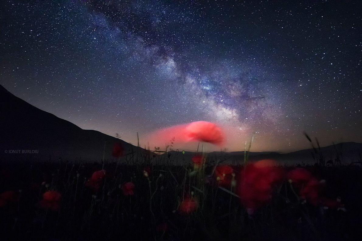 O rasto vermelho de uma papoila cria uma justaposição interessante com a faixa da Via Láctea, ...