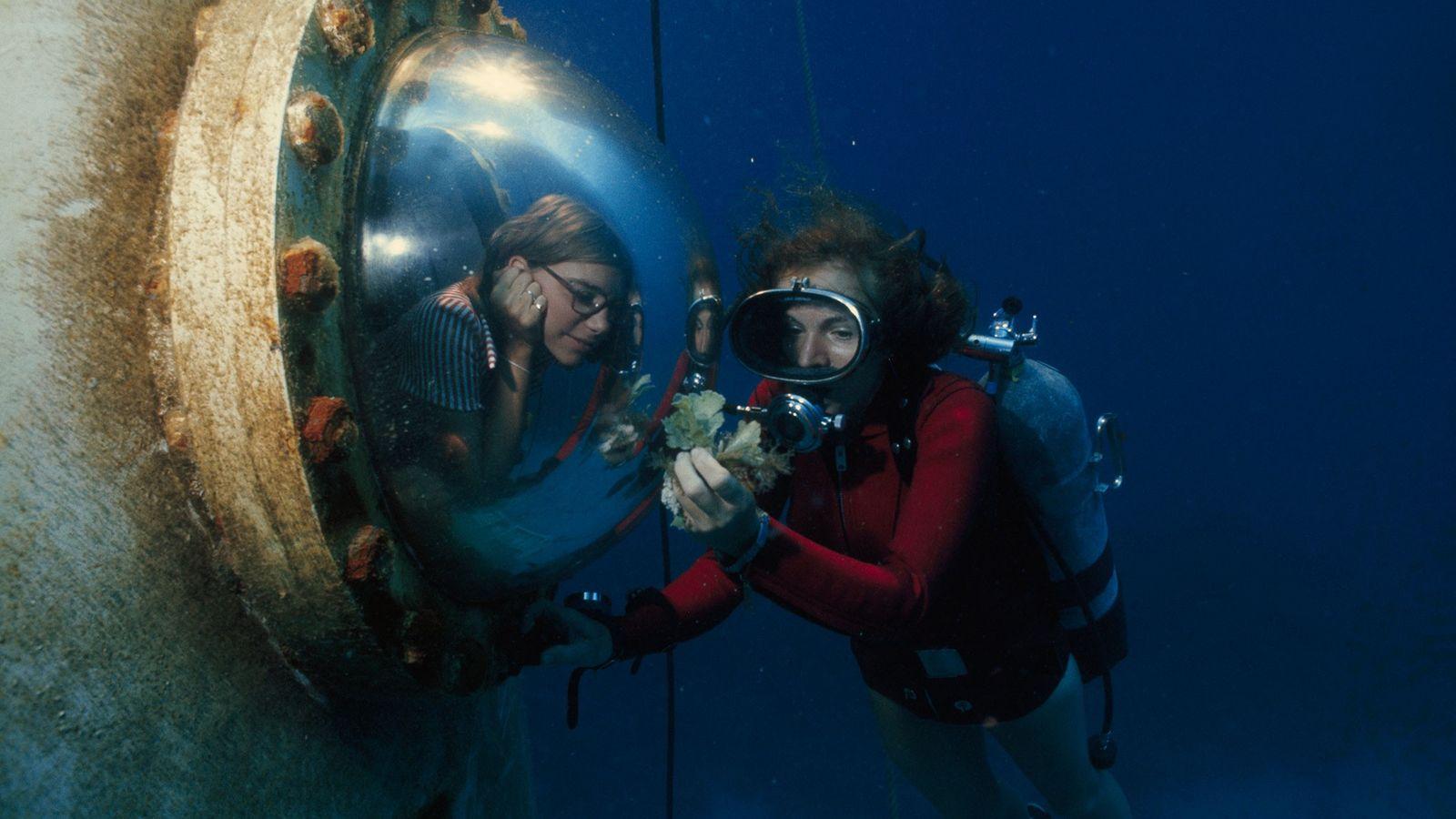 habitat subaquático em Great Lameshur Bay