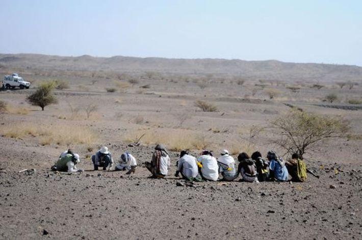 Nova Espécie de Antepassado Humano Encontrado na Etiópia