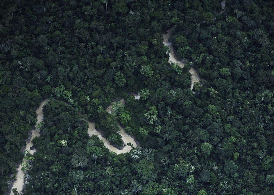 O rio Xinane no Brasil