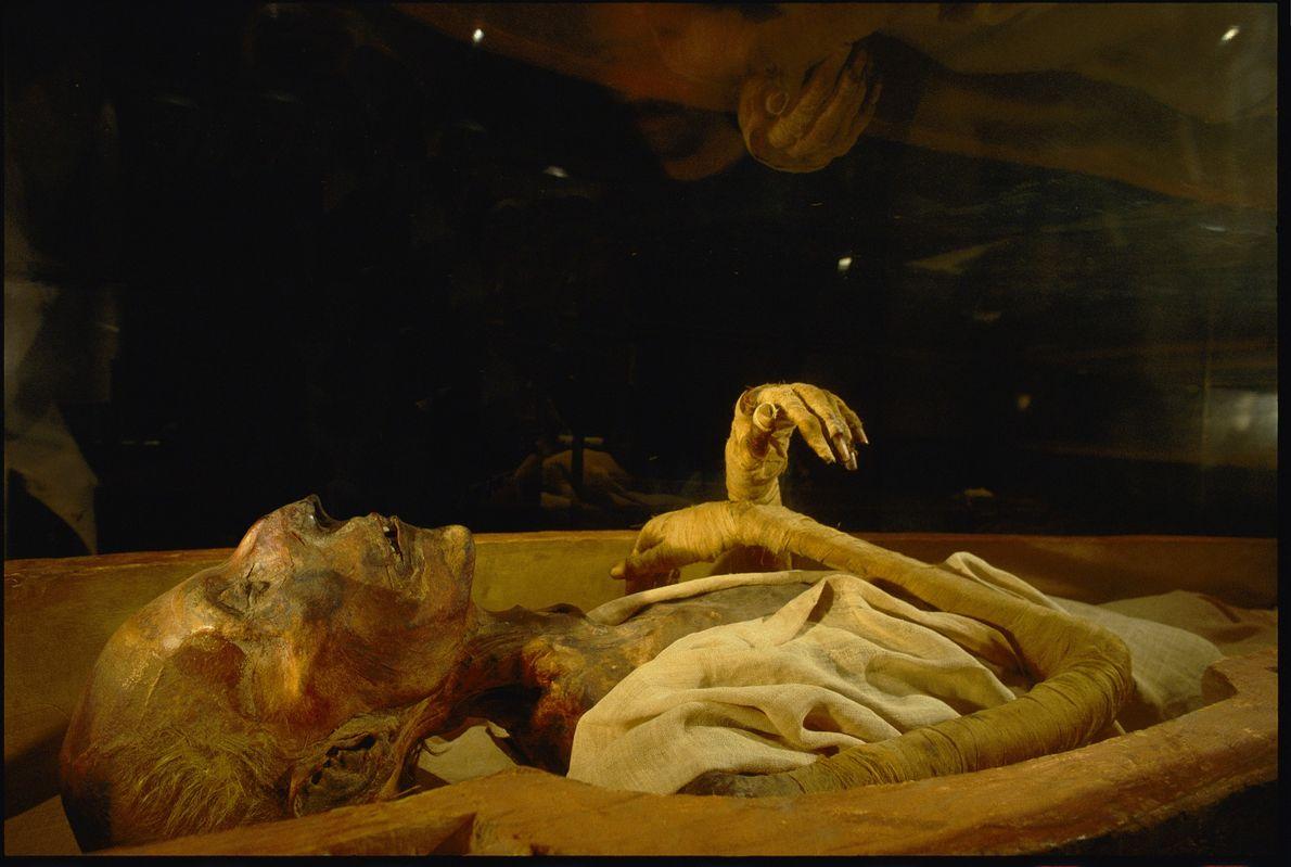 Restos mortais mumificados de Ramsés II