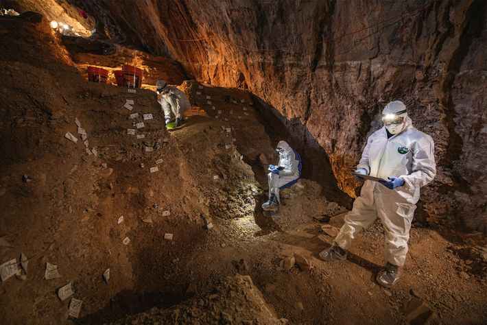Cientistas comparam notas sobre a estratigrafia da Caverna Chiquihuite, em preparação para a recolha de amostras ...