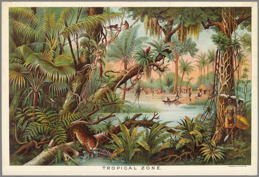 A segunda edição do kit, produzida em 1893, sob a designação de Portefólio Geográfico de Yaggy, incluía novos painéis com imagens expressivas da flora, fauna e povos de diferentes regiões climáticas.