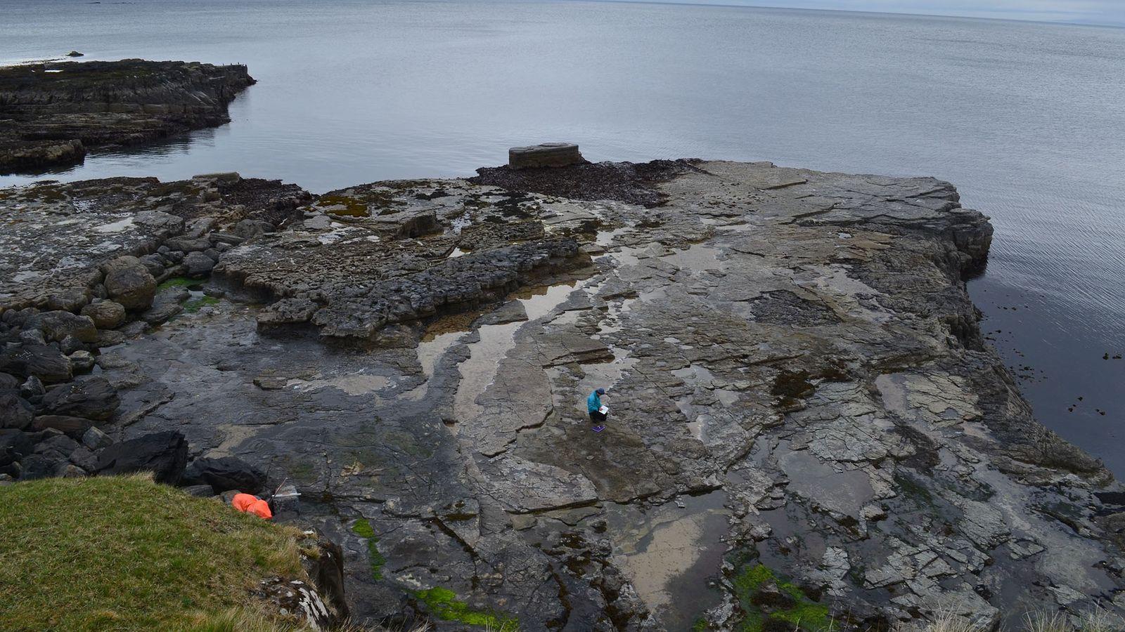 Panorâmica da zona principal onde foram descobertas as pegadas