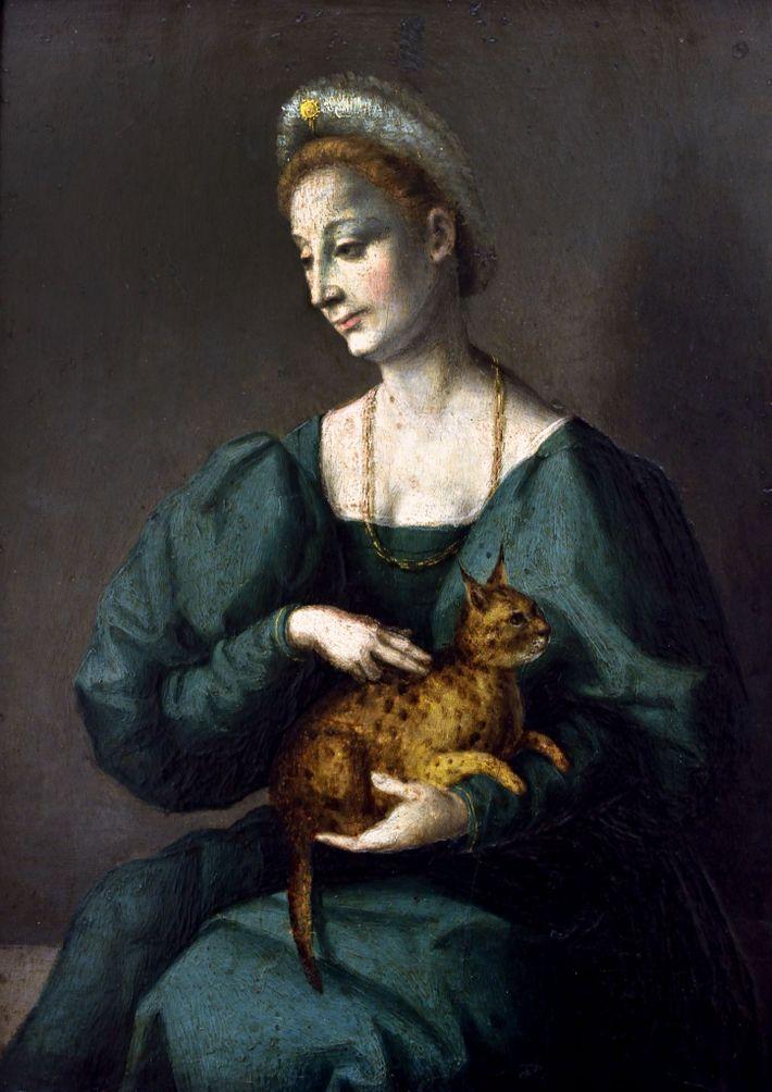 "Mulher dá colo ao que é descrito como um ""gato pantera"""