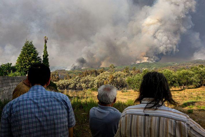 Habitantes locais observam as colunas de fumo e fogo que se erguem da floresta, nos arredores ...