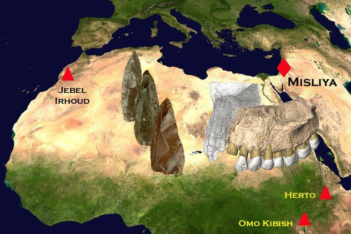 Mapa de fósseis humanos em África e no Médio Oriente