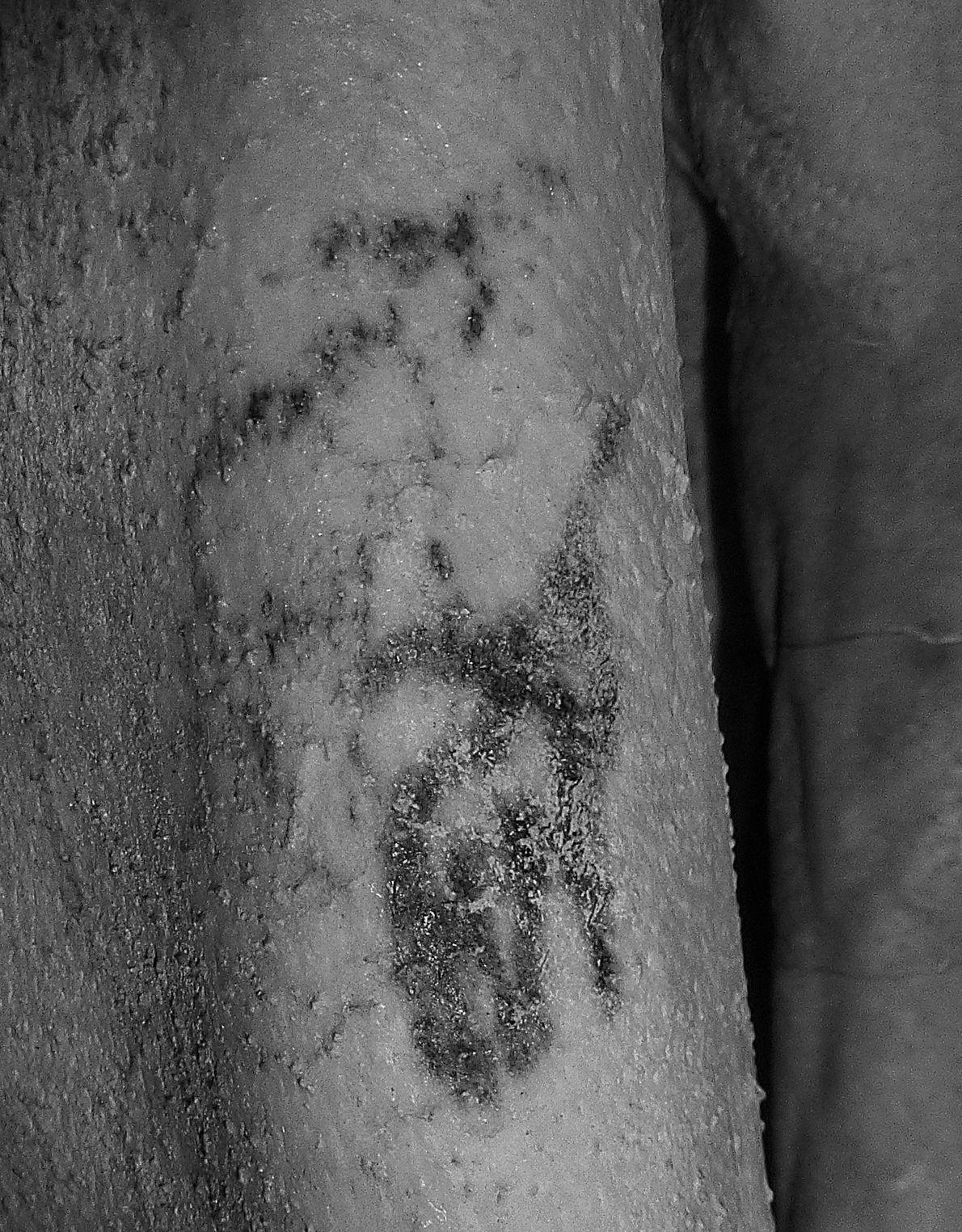 tatuagem 5000 anos