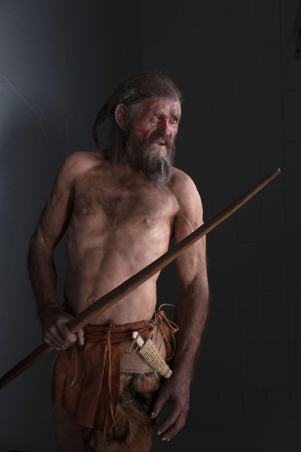 Uma reconstrução de Ötzi, o Homem do Gelo, que devia ter pouco mais de 40 anos.
