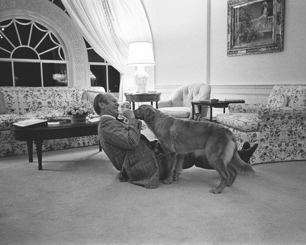 O sucessor de Nixon, o presidente Gerald Ford, brinca com Liberty, a sua golden retriever de ...