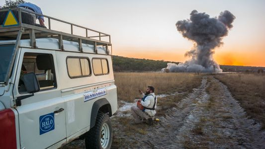 Angola: Príncipe Harry Junta-se aos Esforços Para Erradicar Minas Terrestres