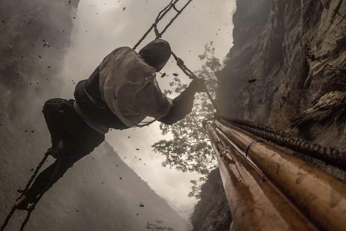 Ozturk montou máquinas fotográficas no poste de bambu