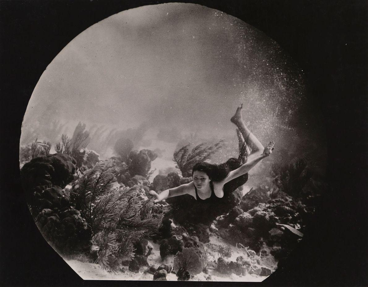 Debaixo do mar