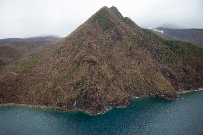 Dez dias depois do furacão, as imagens aéreas mostravam os efeitos da tempestade na exuberante floresta ...