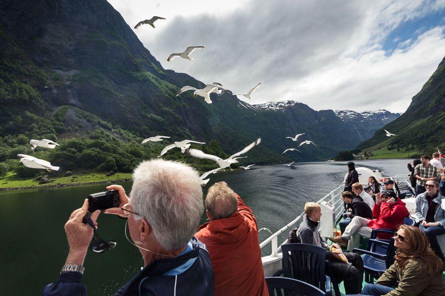 Turistas a observar aves entre os fiordes da Noruega.