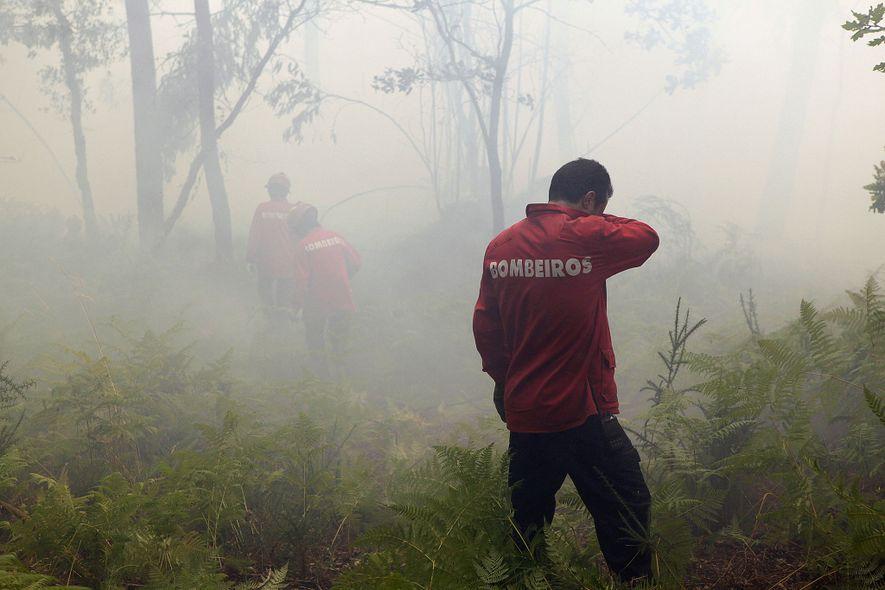 Em 2010, depois de um clima anormalmente quente, deflagraram vários incêndios florestais nas regiões norte e ...