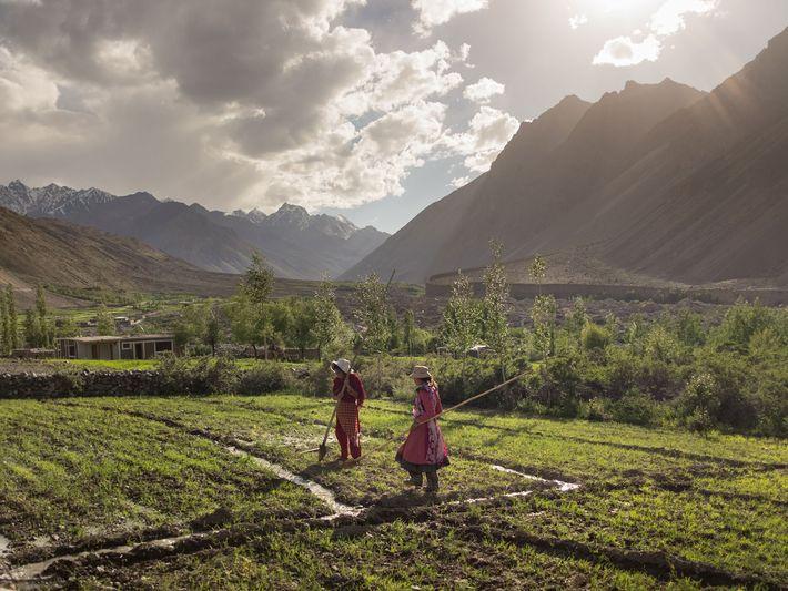 Duas mulheres trabalham num campo de batatas, no vale de Chipursan, no Paquistão. A região faz ...