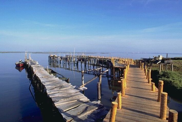Reserva Natural do Estuário do Sado. Porto Palafítico.