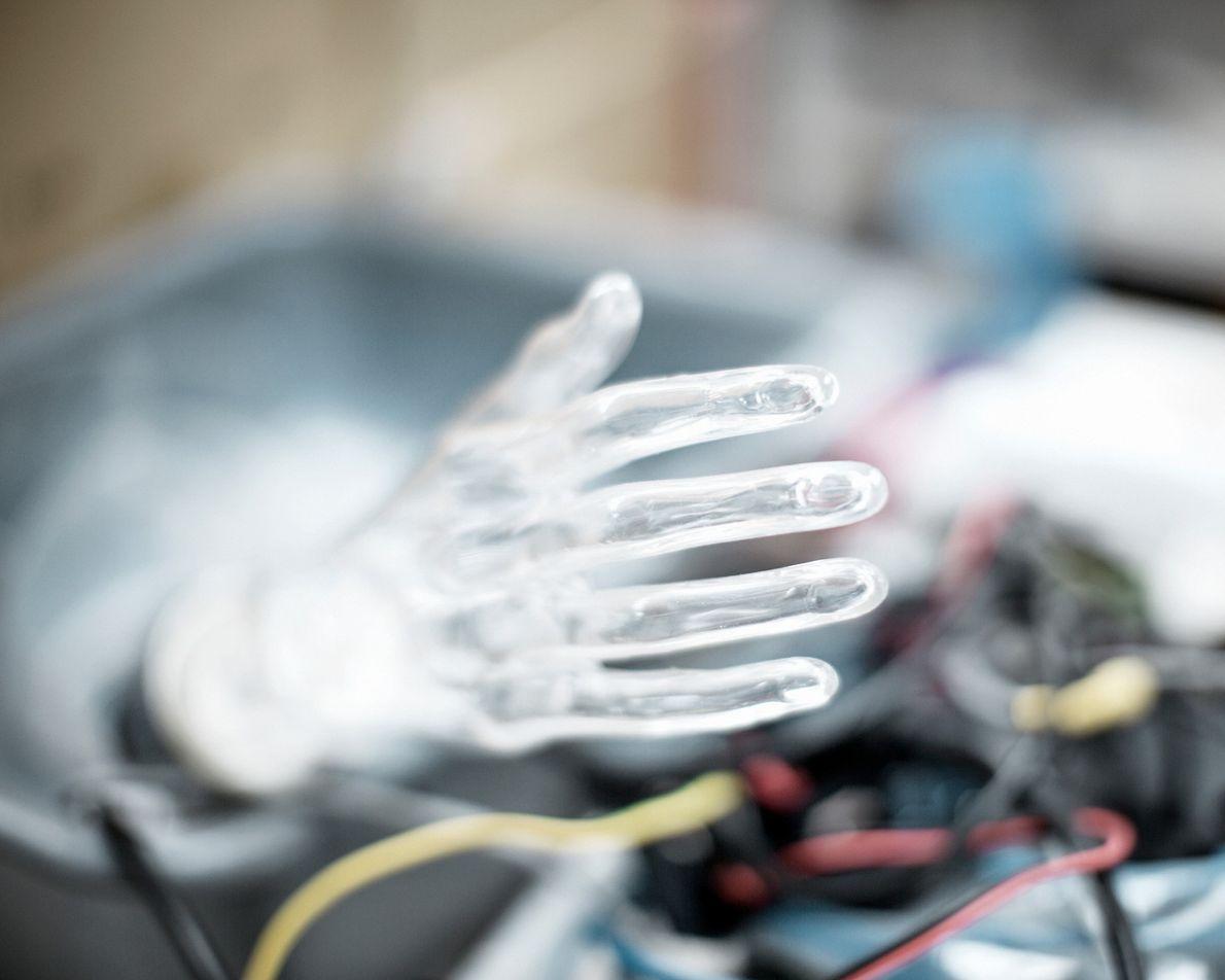 A mão transparente de Sophia.