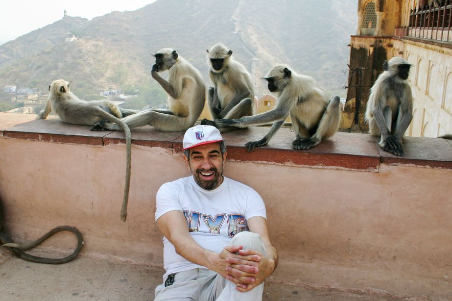 Num templo na Índia em 2004, Podell pousa com um grupo de macacos, um dos quais ...