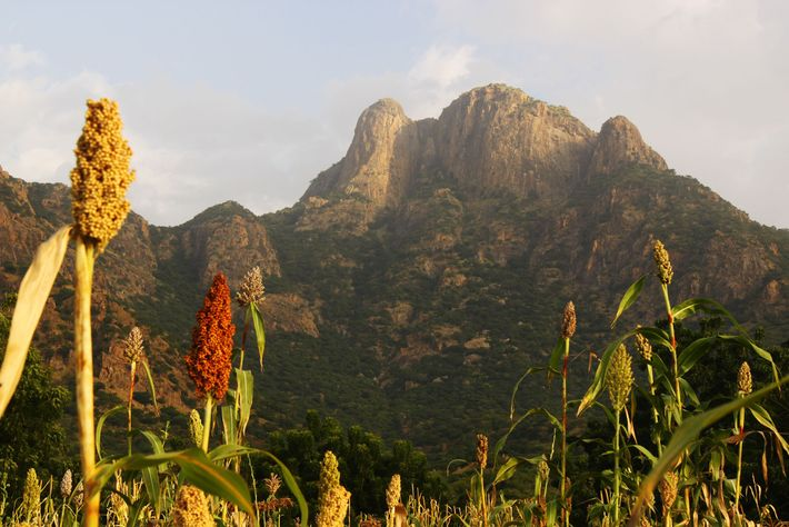 Montanhas Guera no Chade central