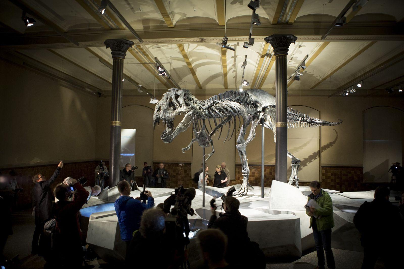 Pessoas observam Tristan, o Tyrannosaurus rex, em Berlim