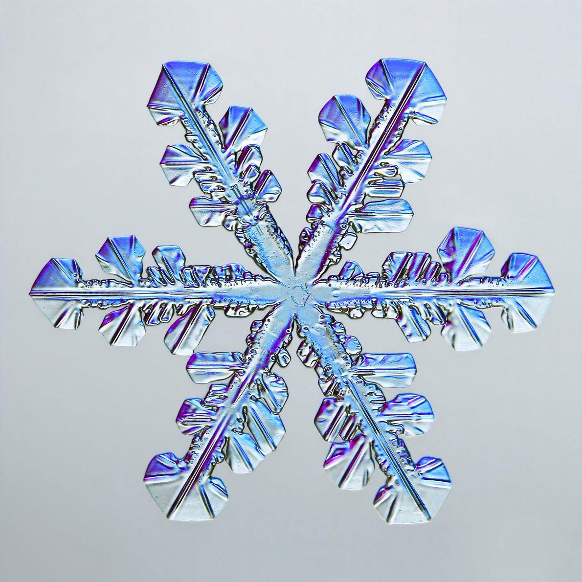 Diversas facetas hexagonais de um floco de neve brilham em tons de azul e roxo, graças …