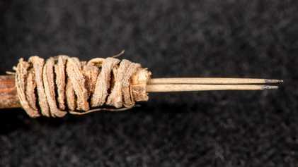 Arqueólogos Identificam Agulha de Tatuagem Com 2000 Anos