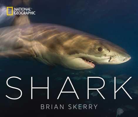 O livro Shark do fotógrafo Brian Skerry
