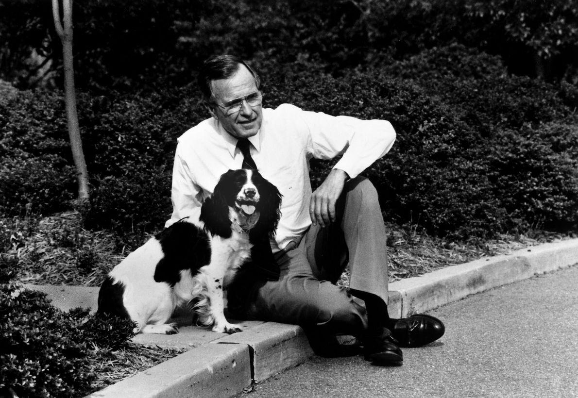 O presidente George H.W. Bush com a sua springer spaniel inglesa, Millie, no exterior da Casa ...