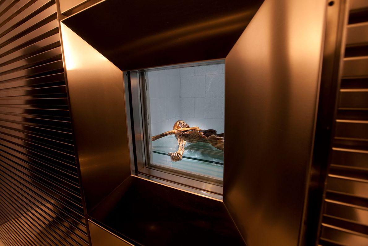 Ötzi e os seus artefactos estão em exposição no Museu de Arqueologia Tirol do Sul, em ...