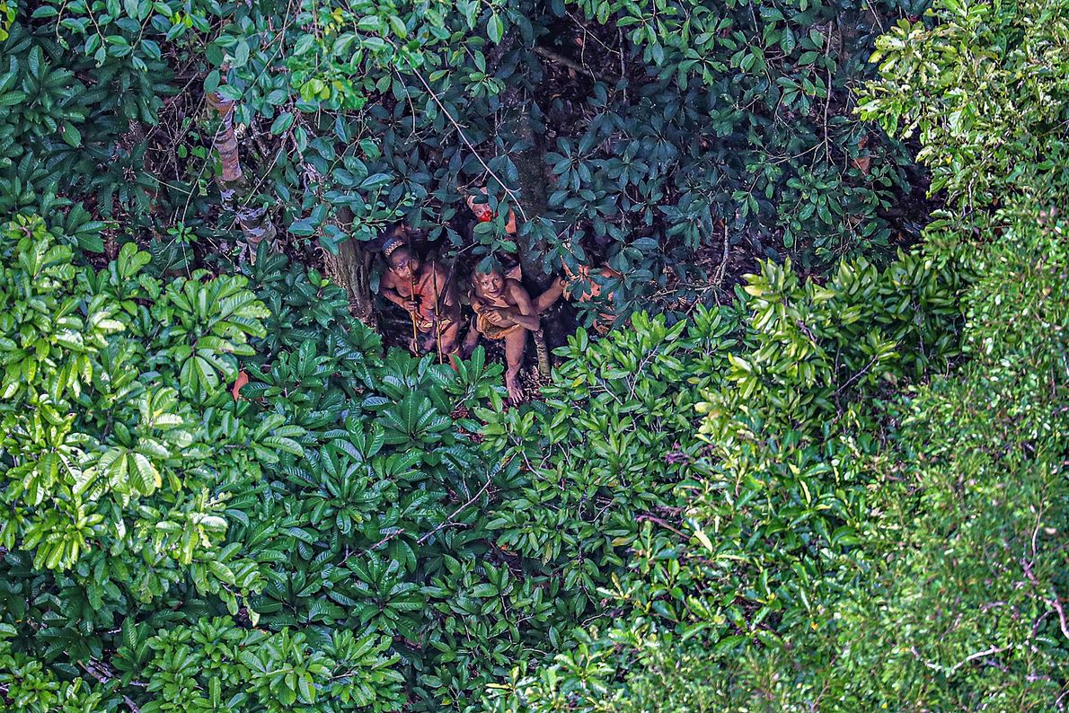Imagem de membros de uma tribo na Amazónia escondidos debaixo de uma árvore