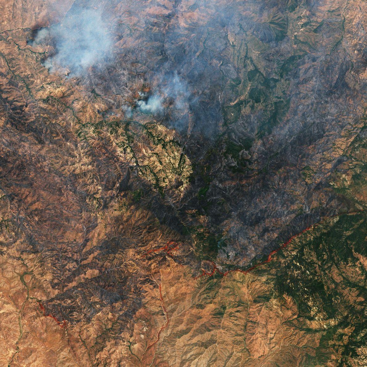No dia 8 de junho, um enorme incêndio destruiu trechos de vegetação a leste de Phoenix, ...