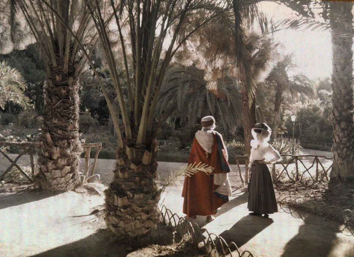 Sombras no Jardim - Fotografias Autocromo