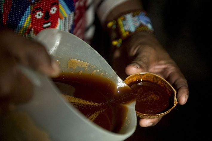 Um curandeiro a oferecer ayahuasca durante um ritual cerimonial de cura, na Colômbia. A descoberta feita ...