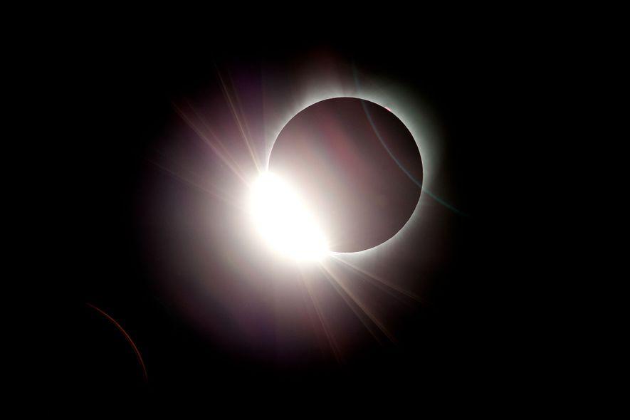 Reações Surpreendentes dos Animais aos Eclipses Solares