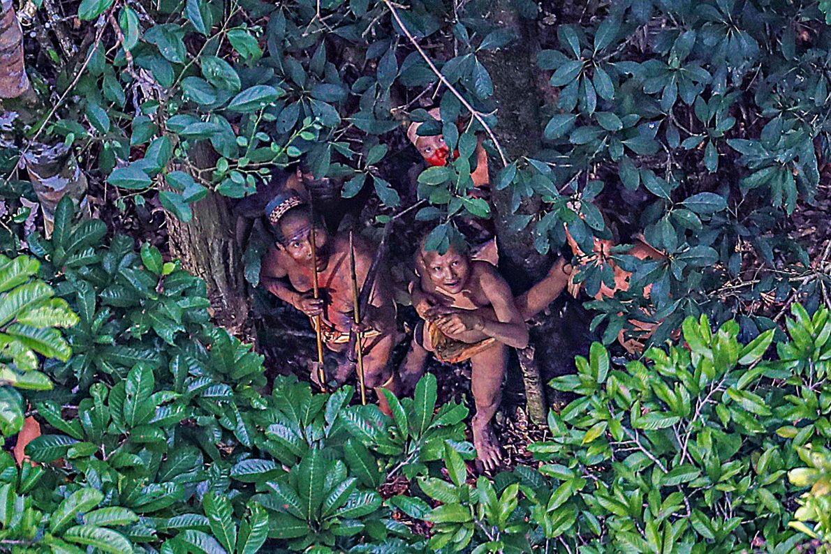 Imagem de uma tribo escondido debaixo de uma árvore na Amazónia