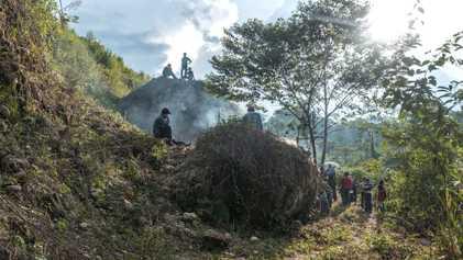 200 Ambientalistas Foram Assassinados no Ano Passado