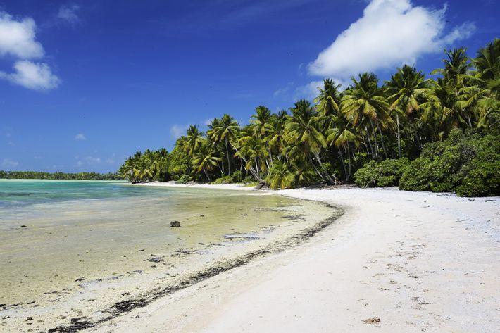 Ilha Nikumaroro e o Desaparecimento de Amelia Earhart